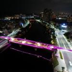 愛河景觀橋完工 綠園道宣告正式完成