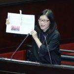 教科書史觀親中 江宜樺:政府不會介入選書