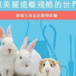 動保團體籲修法 禁化妝品動物實驗
