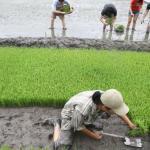 地方農業官員:中央激化階級對立搞鬥爭