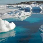 溫室氣體濃度再創新高 全球災難無可避免