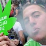 全國合法產銷大麻 烏拉圭全球首例