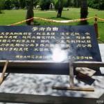 中正大學立太陽花紀念碑 網友讚霸氣
