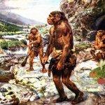 「便便」研究:尼安德塔人吃肉吃菜、飲食均衡