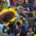 專家評析:藝術的太陽花