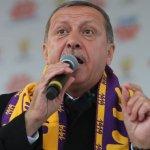 閻紀宇專欄:領導人百毒不侵 土耳其民主奇蹟