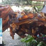 夏曼.藍波安《大海浮夢》選刊(2):飢餓的童年