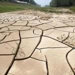中國12省大旱 農民想用淚水澆地