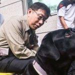 親身體驗導盲犬 柯P承諾將改善無障礙空間