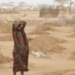13億噸糧食糟蹋 8.42億人挨餓