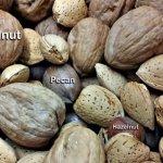 研究:吃堅果長命、防癌、健康、苗條