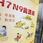 中國H7N9高峰再起 確診逾200例