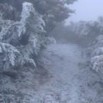 馬年首波 玉山下雪了