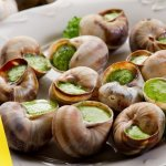 蟲蟲入侵 法國蝸牛美食告急
