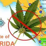 大麻學院招生 佛州大麻業蓄勢待發