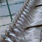 工業用水浪費 經濟部擬徵耗水費