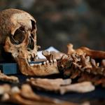 黑死病歷史翻案 飛沫傳染才是元兇