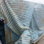 河馬「阿河」重傷 動保團體憂未適當醫療照顧
