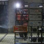 禽流感跨越大安溪 桃園拉警報
