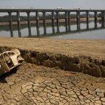 全球暖化危機:西元2100年 巴西聖保羅恐升溫攝氏10度