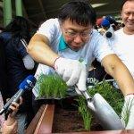 小學每週一道有機菜 北市府將埋單3000萬元