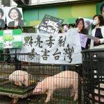 觀點投書:開放美豬就能加入TPP?只怕還是差一截