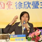 民國黨主席徐欣瑩台中站台 左打藍綠右拚經濟