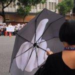 游盈隆專欄:論「超完美切割」的新社會分歧
