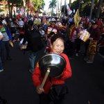 國民黨反核食進擊 洪秀柱率遊行、郝龍斌推公投連署