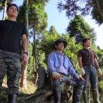 【書摘】:「台灣樹王」30年耗費20億元,種下30萬棵樹
