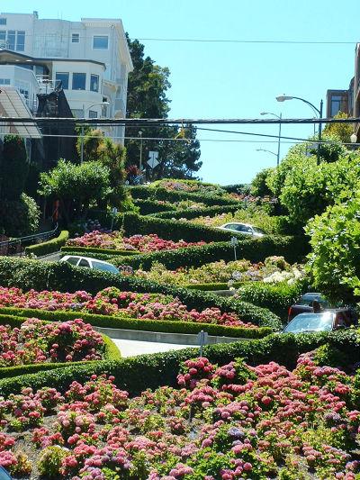 舊金山的倫巴底街是全美國最彎曲的街道 圖/Nickshanks@wiki