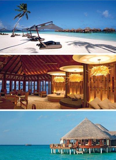 Maldives3.jpg