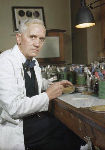 佛萊明的發現,寫下醫學歷史上最輝煌的一頁。(圖/Alexander Fleming@Wikipedia)