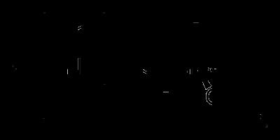 VX神經毒的結構式。(維基百科)