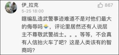 中國網友對丁璇演說的回應。