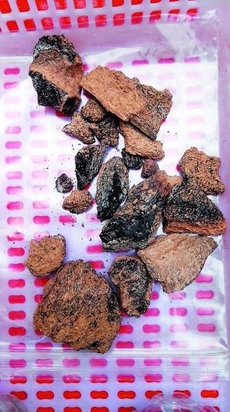 中國山西省丁村遺址出土的碳粒(取自網路)