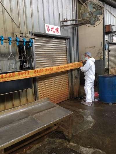 新北市屠宰場發現H5亞型高病原性禽流感病例確診,屠宰線暫時關閉消毒。(新北市動保處提供)