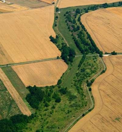 德國綠化帶延亙1400公里,成為瀕危動植物棲地。(圖取自德國綠化帶網站)