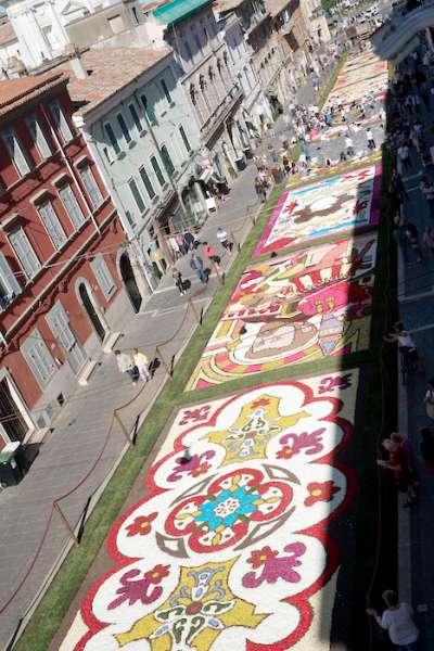 第240屆簡扎諾的花毯節。(曾廣儀攝)
