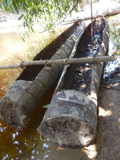 巴西國家印地安基金會去年7月進入亞馬遜叢林探查所拍下的照片。(AP)