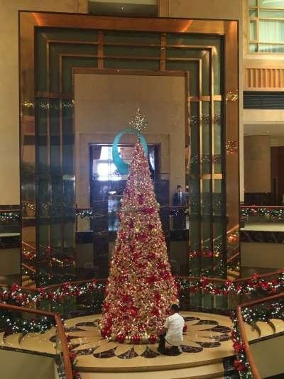 新加坡The Fullerton Hotel聖誕樹,提醒12月到了(圖/謝幸吟提供)
