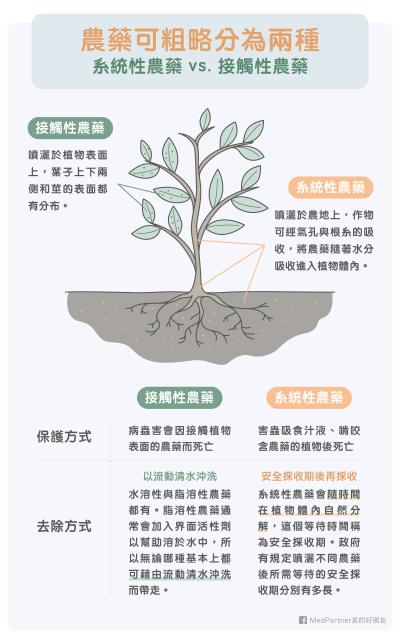 農藥其實可以分:系統性農藥,以及接觸性農藥。(圖/MedPartner)