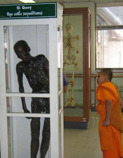 泰國政府為解民憤,選擇以儆效尤,把細偉做成乾屍,陳列在曼谷詩利拉吉(Siriraj)醫院內展示。(圖片取自維基百科)