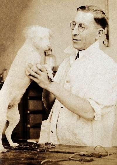 圖為成功製造胰島素的弗雷德里克.班廷與實驗狗。(圖/維基百科)