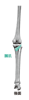 115-1(圖/采實文化提供)
