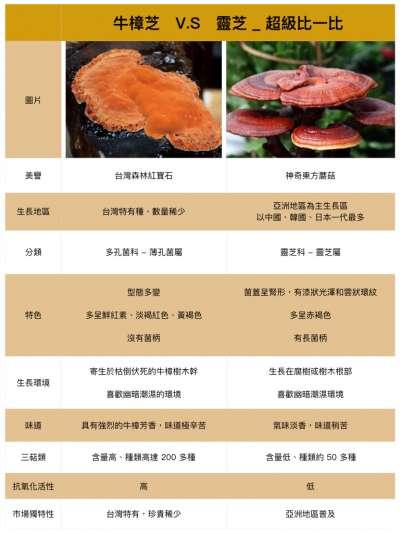 牛樟芝vs靈芝(圖表/Health Blog)