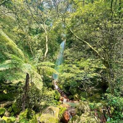 台北登山步道-絹絲瀑布步道。(圖/elven.chen,Instagram)