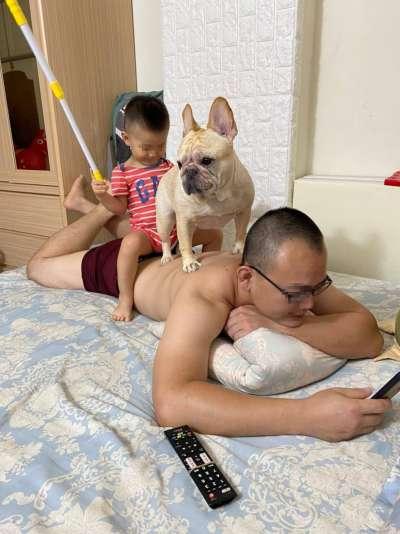 一名家長表示,除了小孩會騎爸爸,連狗狗都會騎上來!(圖/翻攝自爆怨2公社)