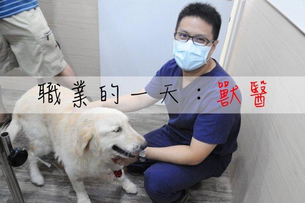 職業的一天》「不用治了,直接安樂死就好!」獸醫的一天到底要面對哪些事?