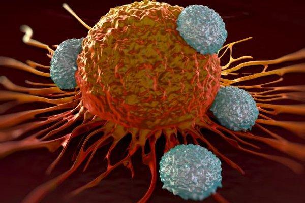 癌症細胞的致命傷找到了!英國研究團隊鎖定「骨幹變異」
